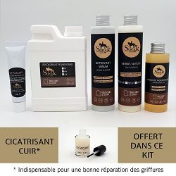 KIT RENOVATION SALON CUIR  2/3 places Noir