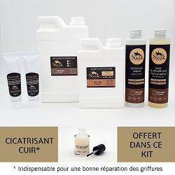 KIT RENOVATION SALON CUIR 4/5 places Noir
